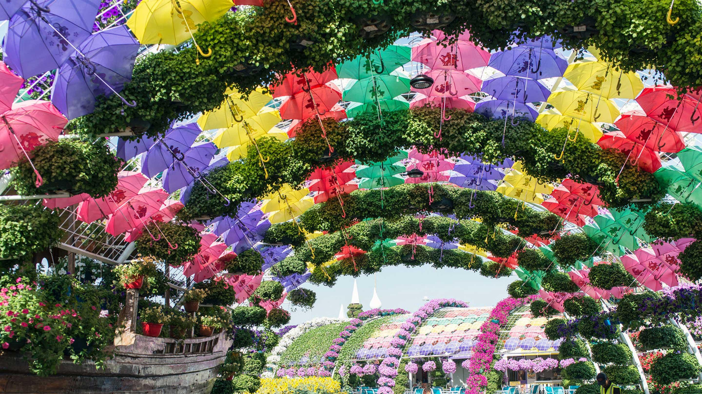 16 9 Photo Copy of Dubai Miracle Garden