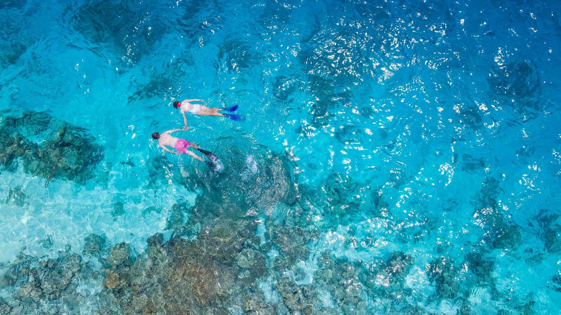 Couple snorkeling in the ocean
